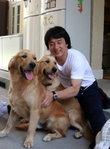 Jackie Chan mit Golden Retriever