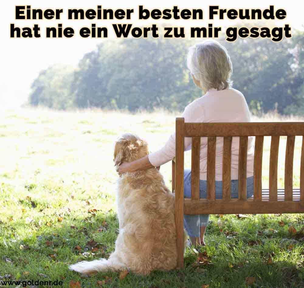Eine Frau sitzt auf der Bank und Ihre Golden Retriever sitzt neben