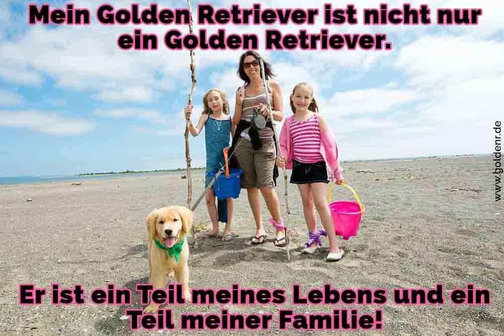Ein Golden Retriever und ihre Besitzer am Strand