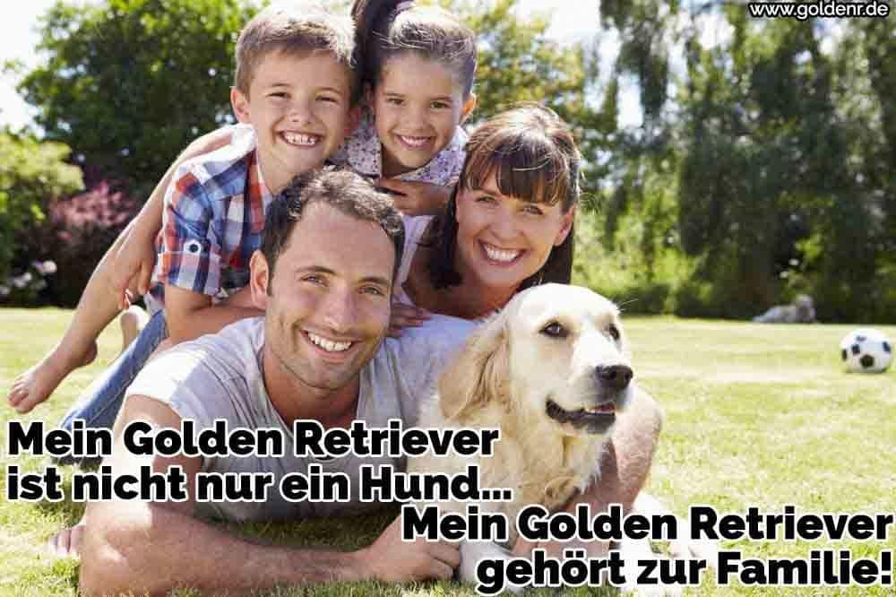 Eine Familie und ihre Golden Retriever