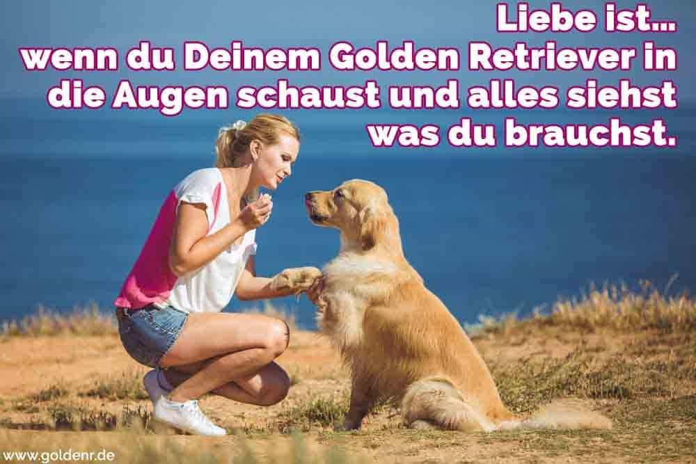 Eine Frau auf Ihre Golden Retriever sprechen